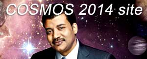 Cosmos2014-site