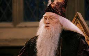 HarryPotterSorcerers_Dumble