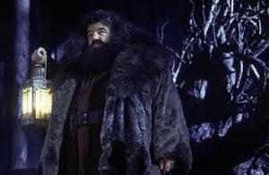 HarryPotterSorcerers_Hagrid